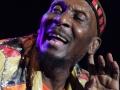 Big Reggae Festival (11)