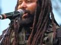 Big Reggae Festival (15)