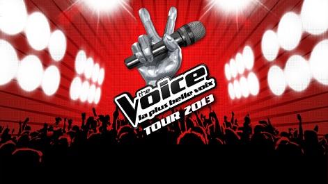 The Voice tour 2013