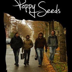 poppy seeds 2