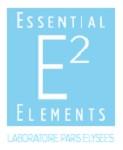 essential-elements-paris-elysees