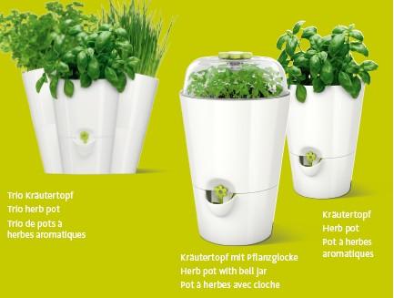 3 modèles pots herbes