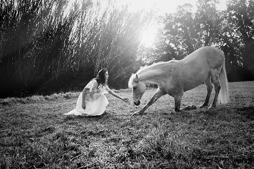 Souleiado-cheval