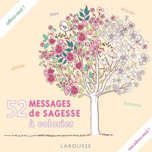 52-messages-sagesse-larousse