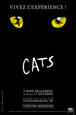 Cats-Affiche