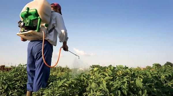 Augmentation accablantes des pesticides en France
