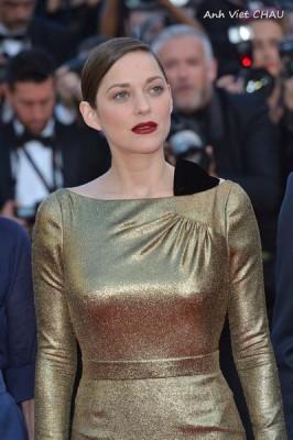 AVC_0143_00002Festival de Cannes 2016-Day 5