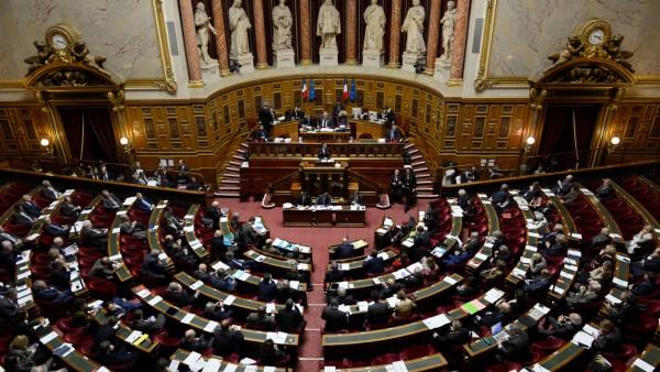 Sénat : L'UNAF et 7 ONG appellent à l'interdiction définitive des néonicotinoïdes