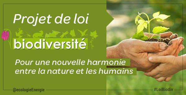 Loi Biodiversité Les lobbies font la loi