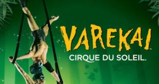 cirque-soleil-affiche