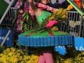 Carnaval Nice Bataille Fleurs (4)
