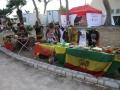 Big Reggae Festival (1)