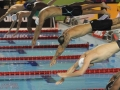 Florent Manaudou (2)Golden Tour FFN NICE