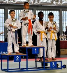 Palmarès du championnat de France de Karaté Kyokushinkaï
