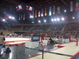 Internationaux de France de Gym 2013