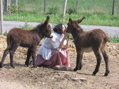 Laila with Donkeys