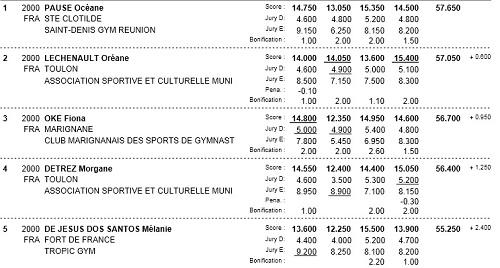 Championnat de France de gymnastique à Cognac-resultats
