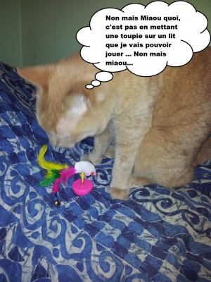 Caramel et la kitty box 2
