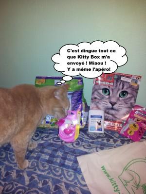 Caramel et la kitty box 3