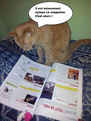 caramel et la kitty box 1