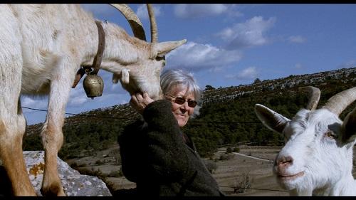 les chèvres de ma mère-13
