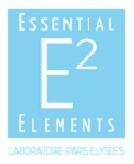 essential-elements-paris-elysees
