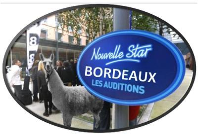 Bordeaux nouvelle star