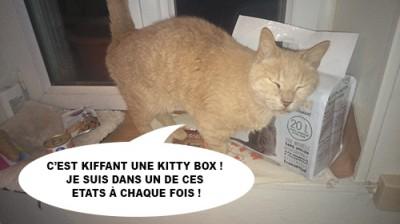 caramel kitty box 3