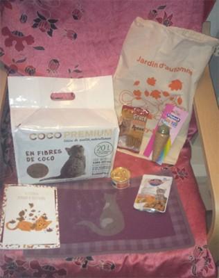 kitty box1