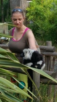 Un lemurien cooperatif.