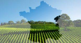 Agriculture française