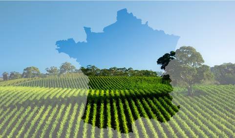 Agriculture française à l'heure des choix