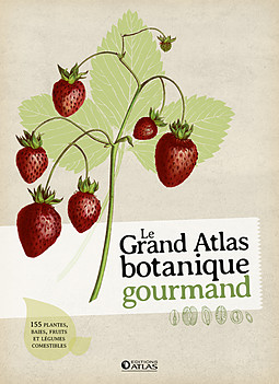 LE GRAND ATLAS BOTANIQUE GOURMAND[ATL].indd