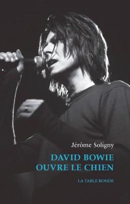 Le livre sur Bowie