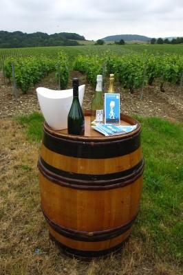 Champagne Christophe©CDT Aube