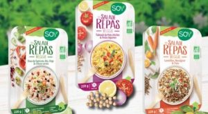 soy-salades-repas-bio-veggie-alimentation