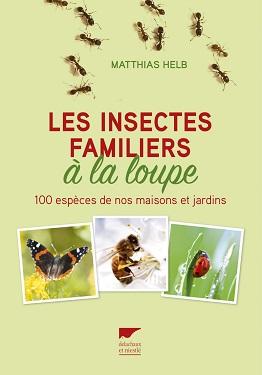 les-insectes-familiers-a-la-loupe-delachaux-niestle