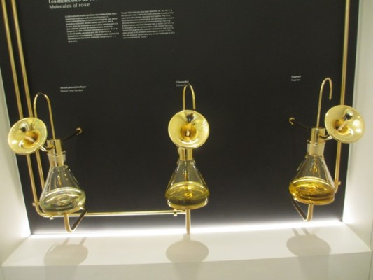 Grand musée du parfum Molécules de rose