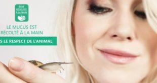 bave-escargot-slider
