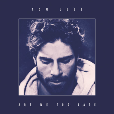 Tom Leeb, la pochette d'Are We Too Late