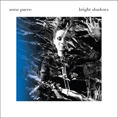 Bright Shadows, le nouvel album d'Anne Paceo