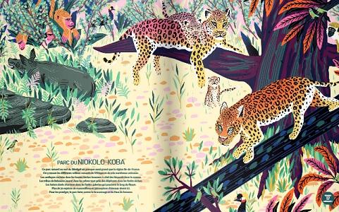 jungles-et-reserves-du-monde-nathan-extrait