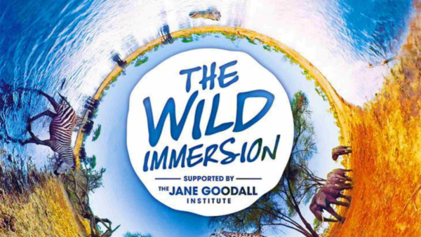 the-wild-immersion-realité-virtuelle-VR