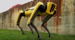 Les chiens-robots de Boston Dynamics