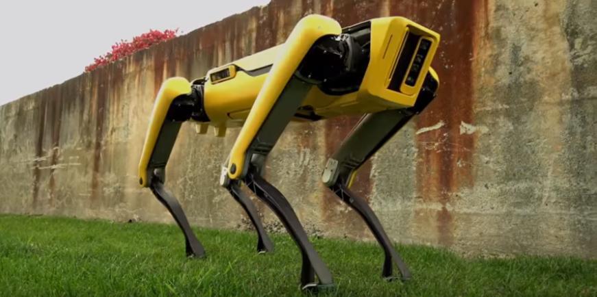 Les chiens-robots de Boston Dynamics