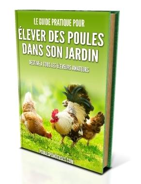 ebook le-guide-pratique-pour-elever-des-poules-dans-son-jardin