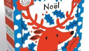 mon-petit-livre-tissu-noel-flammarion
