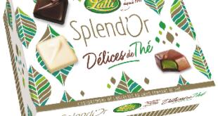 splendor-delice-the-chocolat-lutti-noel