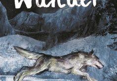 wander-roman-ecole-des-loisirs