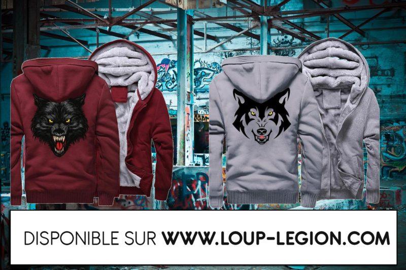 Loup-Légion_article